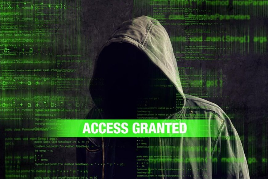 HackerAccessGranted2